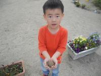 DSCN3974_convert_20120517210719.jpg